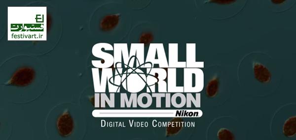 فراخوان عکاسی|مسابقه عکاسی میکروگرافی «دنیای کوچک» شرکت نیکون