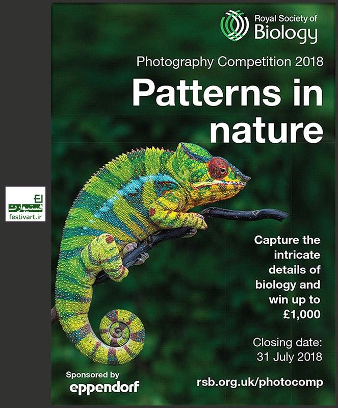 فراخوان رقابت بین المللی عکاسی «انجمن سلطنتی زیست شناسی» سال ۲۰۱۸