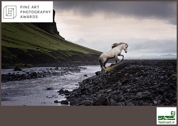 فراخوان رقابت بین المللی عکاسی Fine Art 2019 (FAPA)