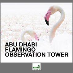 فراخوان رقابت بین المللی طراحی برج دیدبانی فلامینگو در ابوظبی