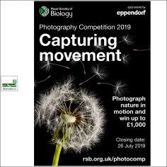 فراخوان رقابت بین المللی عکاسی انجمن سلطنتی زیست شناسی ۲۰۱۹
