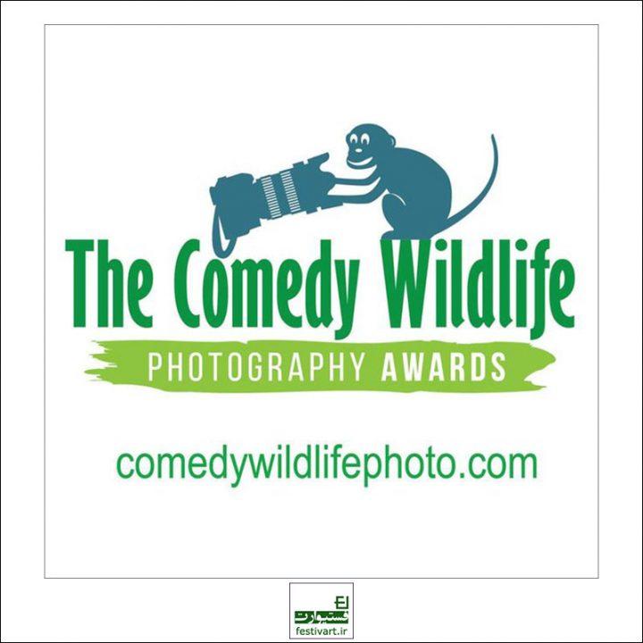 فراخوان رقابت بین المللی عکاسی کمدی حیات وحش ۲۰۱۹