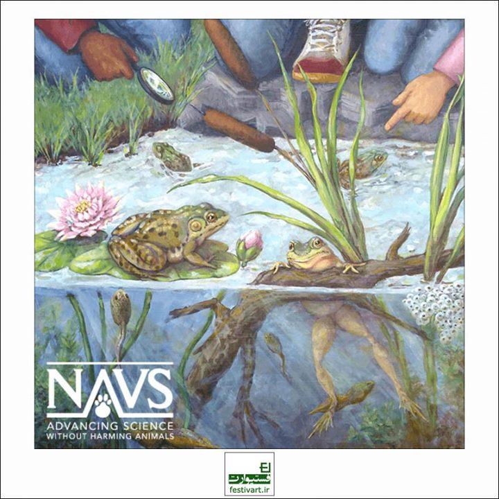 فراخوان رقابت بین المللی هنر برای حیوانات NAVS ۲۰۱۹
