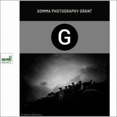 فراخوان گرنت عکاسی Gomma ۲۰۱۹