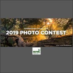 فراخوان رقابت بین المللی عکاسی نور SPIE ۲۰۱۹