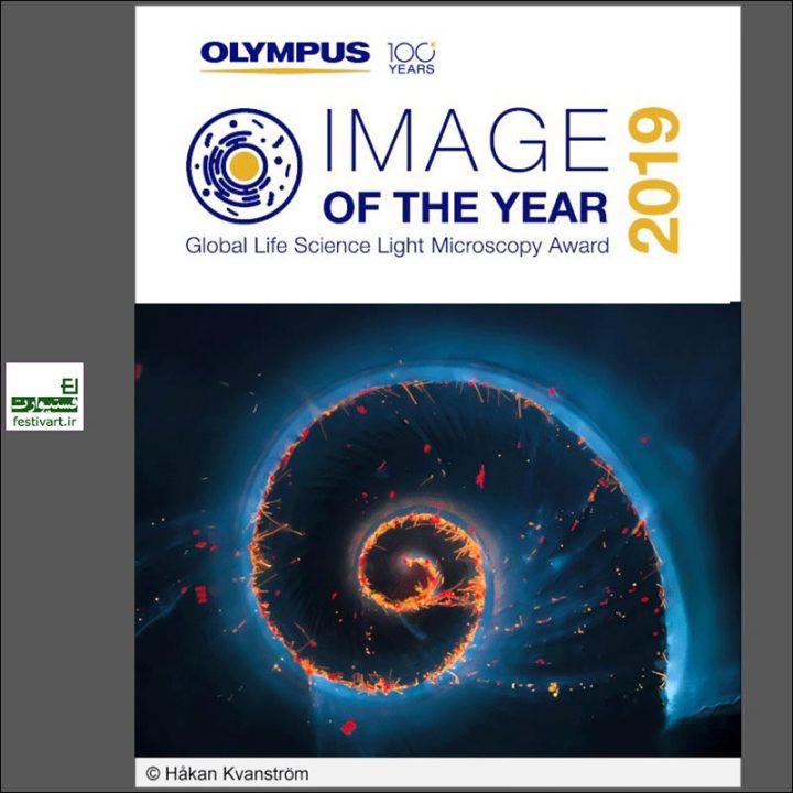 فراخوان رقابت بین المللی عکاسی Olympus ۲۰۱۹