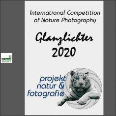 فراخوان رقابت بین المللی عکاسی طبیعت glanzlichter ۲۰۲۰