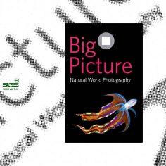 فراخوان رقابت بین المللی عکاسی از جهان طبیعت BigPicture Natural World ۲۰۲۰