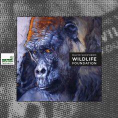 فراخوان سیزدهمین رقابت بین المللی هنرمند حیات وحش ۲۰۲۰