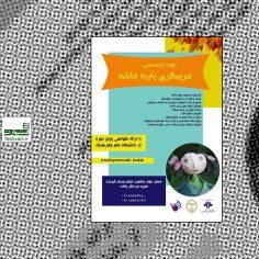 فراخوان دوره آموزش تخصصی مربیگری موسیقی کودکان(اُرف)