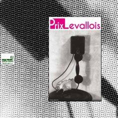 فراخوان جایزه بین المللی عکاسی Levallois ۲۰۲۰
