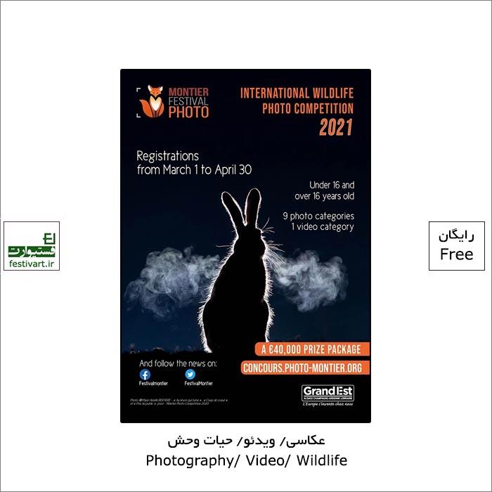 فراخوان بیست و پنجمین رقابت بین المللی عکاسی Wildlife ۲۰۲۱