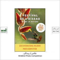 فراخوان رقابت بین المللی عکاسی Wildbird ۲۰۲۲
