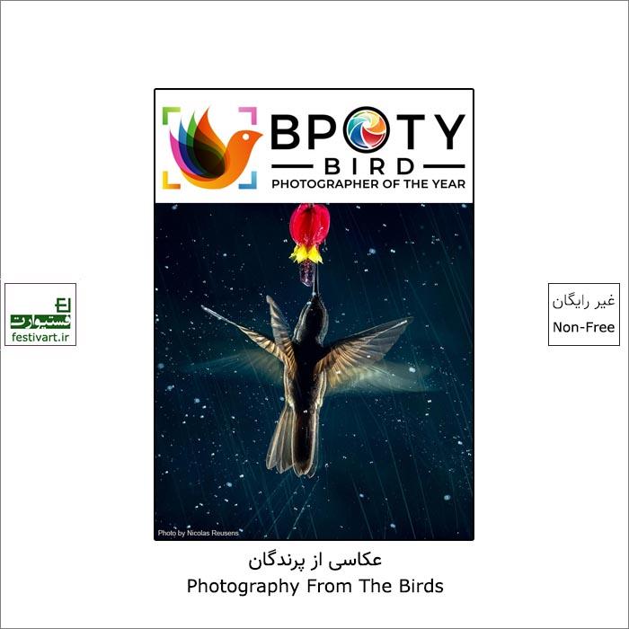 فراخوان رقابت بین المللی عکاسی پرنده BPOTY ۲۰۲۲